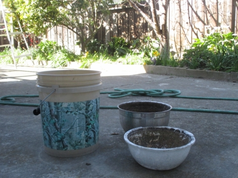 Bucket and big bowls for collecting kichen washing waste water